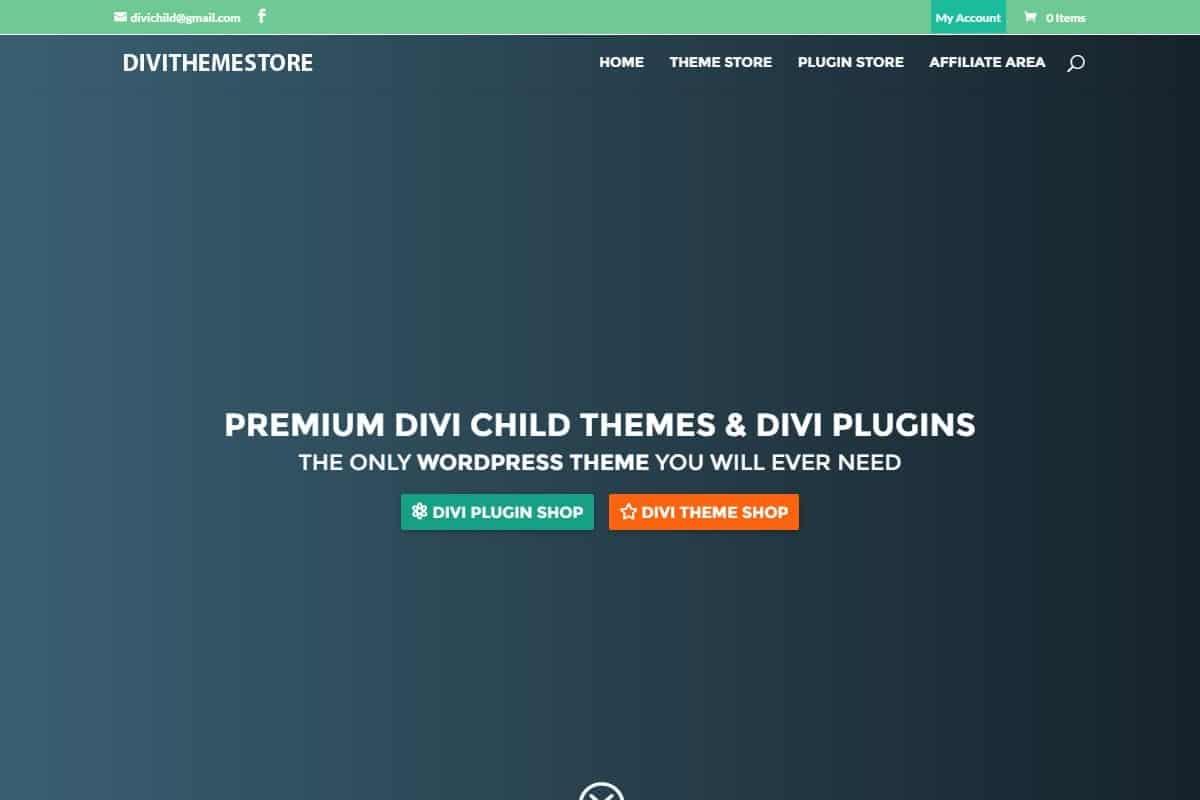 Gmail theme gallery - Divi Theme Store