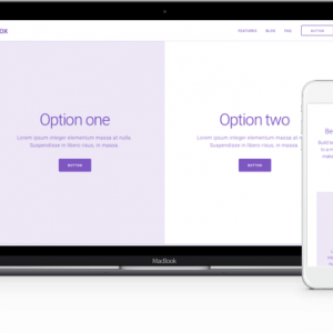 Wireframe Layout