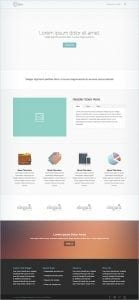 Divi Homepage Example